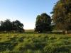 petras-farm-guesthouse-outside-vryheid-6