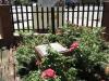vryheid-carnegie-library-mark-st-landrost-st-s27-46-07-e-30-47-5
