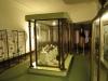 vryheid-lucas-meyer-house-interior-displays-cnr-mark-landrost-st-39