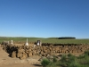 nkambule-graves-with-battleground-in-background-2