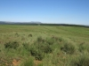 nkambule-views-from-square-towards-hlobane-1