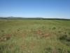 nkambule-views-from-square-towards-hlobane-3