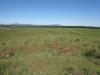 nkambule-views-from-square-towards-hlobane-3
