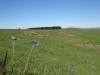 nkambule-views-from-zulu-marksmens-site-towards-crest-6