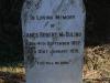 WEENEN-CEmetery-grave-James-Robert-McDuling-1919