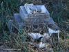WEENEN-Cemetery-grave-JPC-Nel