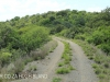 Cabbage Express  Tierkloof 4.5m arch culvert Weenen Reserve (3)