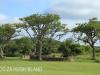 Weenen Nature Reserve Campsite & hide (1)