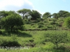 Weenen Nature Reserve Onverwacht farm Coetzee 1862 28.51.39 S 29.59.38 E (2)