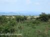 Weenen Nature Reserve Picnic site  Umtunzini  28.52.51 S 30.1.29 E (52)
