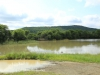 Weenen Nature Reserve picnic site No 14 28.51.37 S 29.38.28 E (2)