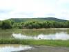 Weenen Nature Reserve picnic site No 14 28.51.37 S 29.38.28 E (3)