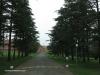 Mooi-River-Weston-Agricultural-College-S-29.12.46-E-30.02.07-2