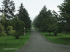 Mooi-River-Weston-Agricultural-College-driveway-1