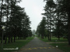 Mooi-River-Weston-Agricultural-College-driveway-2
