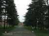 Mooi-River-Weston-Agricultural-College-driveway-3