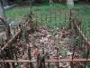 Westville-Cemetery-grave-5E-45