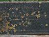 Westville-Cemetery-grave-Violet-Dickens-1951-123