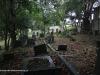 Westville-Cemetery-view-104