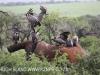Zimanga - elephant joust ends in death (1)