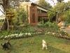 Bethany Farm Chapel - Exterior views (1)