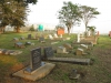 Bethany Farm Family Cemetery - Grave -  Overview