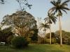 Bethany Farm - Farmhouse - Hagemann family - gardens (4)