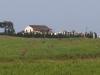Emeraldine Poultry Farm - D29 - S29.15.19 E 31.23.04 - Tugela district - Elev 56m (2)