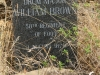 ft-evelyn-grave-drum-major-william-brown-58th-regt-died-3-august-1879-s-28-28-52-7-e-31-06-25-24