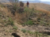 ft-evelyn-main-ruins-of-fort-30m-from-road-s-28-29-040-e-31-06-448-elev-1034m-15