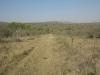 koningskroon-dorstfontein-farm-ft-victoria-1879-s-28-25-53-e-31-18-57-elev-731m-1