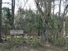 manzini-estates-zulu-war-graves-cpl-w-cotter-17th-lancers-lt-h-s-douglas-21st-royal-scotts-fusiliers-1879-4