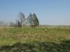 mthonjaneni-fort-3-post-ulundi-invasion-s-28-28-32-e-31-20-1