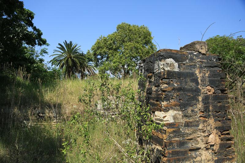 Ndwedwe Road - P100 - Farm (32)