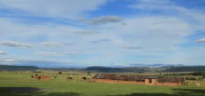Dundee - Lennox farm - fields and haymaking -