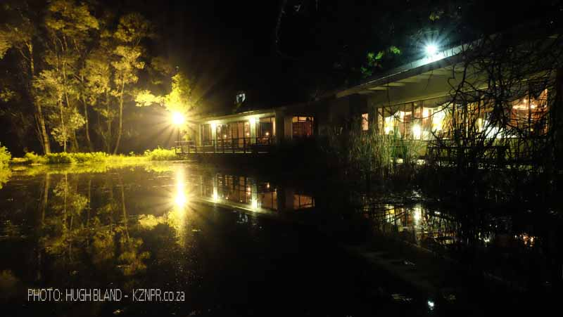 Kamberg - Cleopatra Mountain Lodge - lake night scene (1)