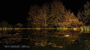 Kamberg - Cleopatra Mountain Lodge - lake night scene (2)