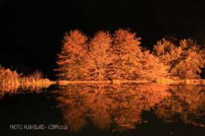 Kamberg - Cleopatra Mountain Lodge - lake night scene (7).