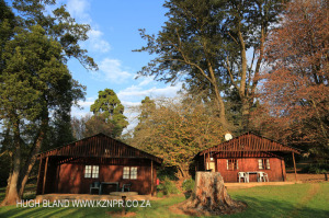 Korongo Valley Guest Farm log cabins (2)